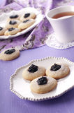 Homemade cookie Royalty Free Stock Photography
