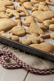 Homemade Cookie Biscuits Baking Tray Pot Holder Stock Photos