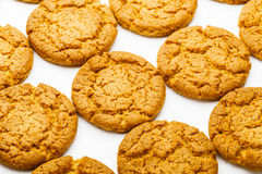 Homemade Cookie close up Stock Images