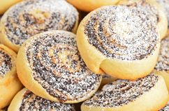 Homemade cookie roll with poppy Royalty Free Stock Images