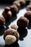 Homemade cookies. Delicious animal shaped homemade cookies with shallow depth of field Stock Image