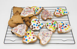Homemade Cookies Stock Images