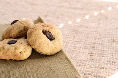 Homemade cookies with chocolate are the window. Homemade cookies with chocolate are a hundful of the window Royalty Free Stock Photos