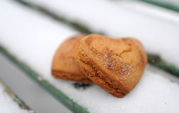 Homemade cookies. With cinnamon in the snow Royalty Free Stock Photo