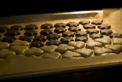 Homemade cookies in oven Stock Photography