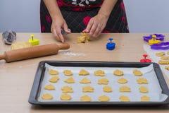 Homemade cookies. Royalty Free Stock Photos