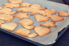 Homemade cookies right from the oven. A selection of funny homemade biscuits on a pan Royalty Free Stock Photography