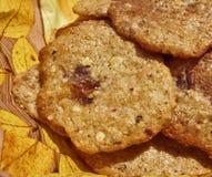 Homemade cookies Royalty Free Stock Photos