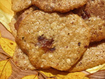 Homemade cookies Royalty Free Stock Photography