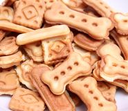 Homemade cookies. Some fresh homemade cookies for a dog stock photography