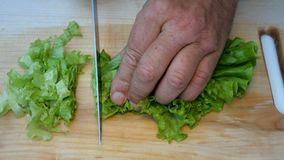 Homemade cooking. Human hands cut a fresh salad leaves, with a sharp kitchen knife, on a wooden surface for cooking. stock video footage