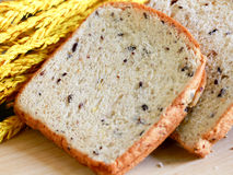 Homemade cooking made from whole wheat and grains with breads Royalty Free Stock Images