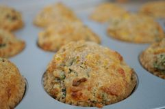 Homemade corn savory muffins in the pan Royalty Free Stock Image