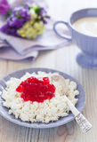 Homemade cottage cheese Stock Photo