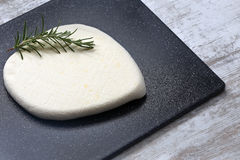 Homemade cottage cheese Stock Photography