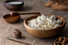 Homemade cottage cheese royalty free stock image