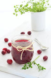 Homemade cranberry jam Stock Image