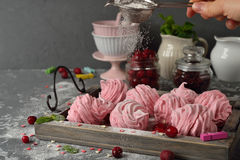Homemade cranberry marshmallow Royalty Free Stock Images