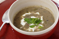 Homemade cream of mushroom soup Royalty Free Stock Photography
