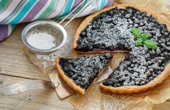 Homemade crispy tart with fresh blueberries and powdered sugar. Selective focus Royalty Free Stock Images