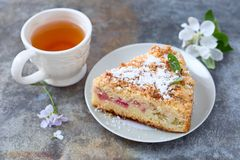 Rhubarb crumb cake. Homemade crumb cake with rhubarb pieces stock photos