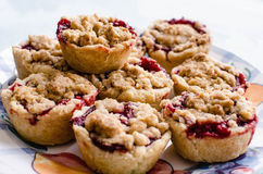 Homemade crumble tarts. Display of delicious homemade rustic fruit tarts Royalty Free Stock Images