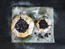 Homemade crusty blueberry pie or galette with ice Stock Images