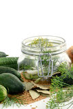 Homemade cucumbers in jar glass with herbs like dill and onions Stock Photography