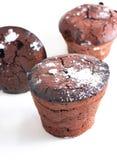 Homemade cupcakes Stock Photography