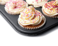 Homemade Cupcakes on a Baking Tray Royalty Free Stock Photography