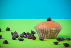 Homemade cupcakes on a colored background. Selective focus. Tone Royalty Free Stock Photography