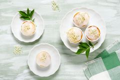 Homemade cupcakes with elderberry flowers and sugar icing. royalty free stock image