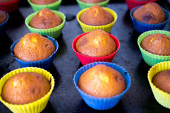 Homemade cupcakes Royalty Free Stock Images