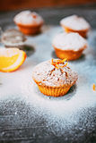Homemade cupcakes with oranges Royalty Free Stock Photography