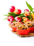 Homemade cupcakes with spring tulips. Stock Image