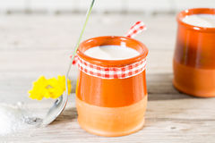 Homemade Curd Stock Photography