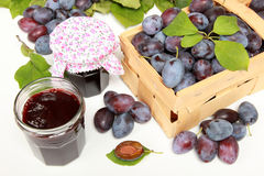 Homemade damson jam. Two glasses of homemade damson jam with fresh fruits and leaves royalty free stock photos