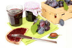Homemade damson jam. Two glasses of homemade damson jam with fresh fruits and leaves royalty free stock image