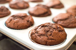 Homemade dark chocolate muffins baking tin pan Royalty Free Stock Photography