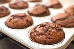 Homemade dark chocolate muffins baking tin pan Royalty Free Stock Photography