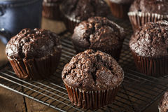 Homemade Dark Chocolate Muffins Royalty Free Stock Photos