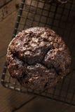 Homemade Dark Chocolate Muffins Royalty Free Stock Photo