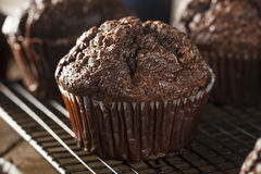 Homemade Dark Chocolate Muffins Royalty Free Stock Photo
