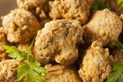 Free Homemade Deep Fried Mushrooms Royalty Free Stock Photos - 49603388