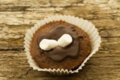 Homemade delicious chocolate cupcake on wooden background Stock Photos