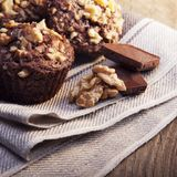 Homemade delicious chocolate Muffins with Walnut on wood backrou. Nd royalty free stock photos