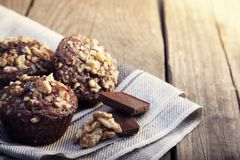 Homemade delicious chocolate Muffins with Walnut on wood backrou Stock Photography