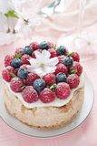 Homemade delicious fruit cake with berries garnish Royalty Free Stock Image