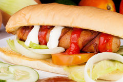 Homemade Delicious Hotdog sandwich. Picture of Homemade Delicious Hotdog sandwich Royalty Free Stock Photography