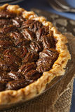 Homemade Delicious Pecan Pie Royalty Free Stock Photo